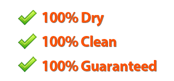 boise carpet cleaning